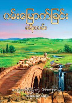 Twtj Burmese Cover